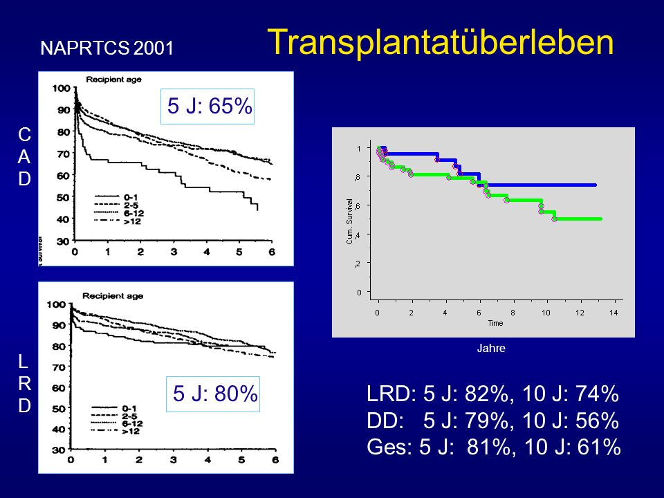 Transplantatüberleben