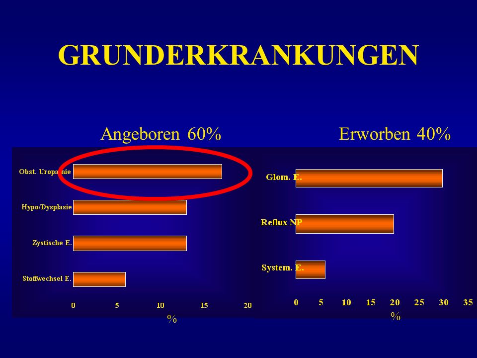 GRUNDERKRANKUNGEN Angeboren 60% Erworben 40% % %