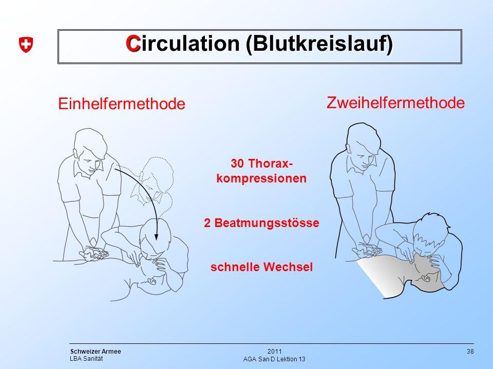 Circulation (Blutkreislauf)