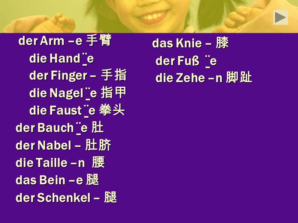 das Knie – 膝 die Hand ¨e der Fuß ¨e der Finger – 手指 die Zehe –n 脚趾