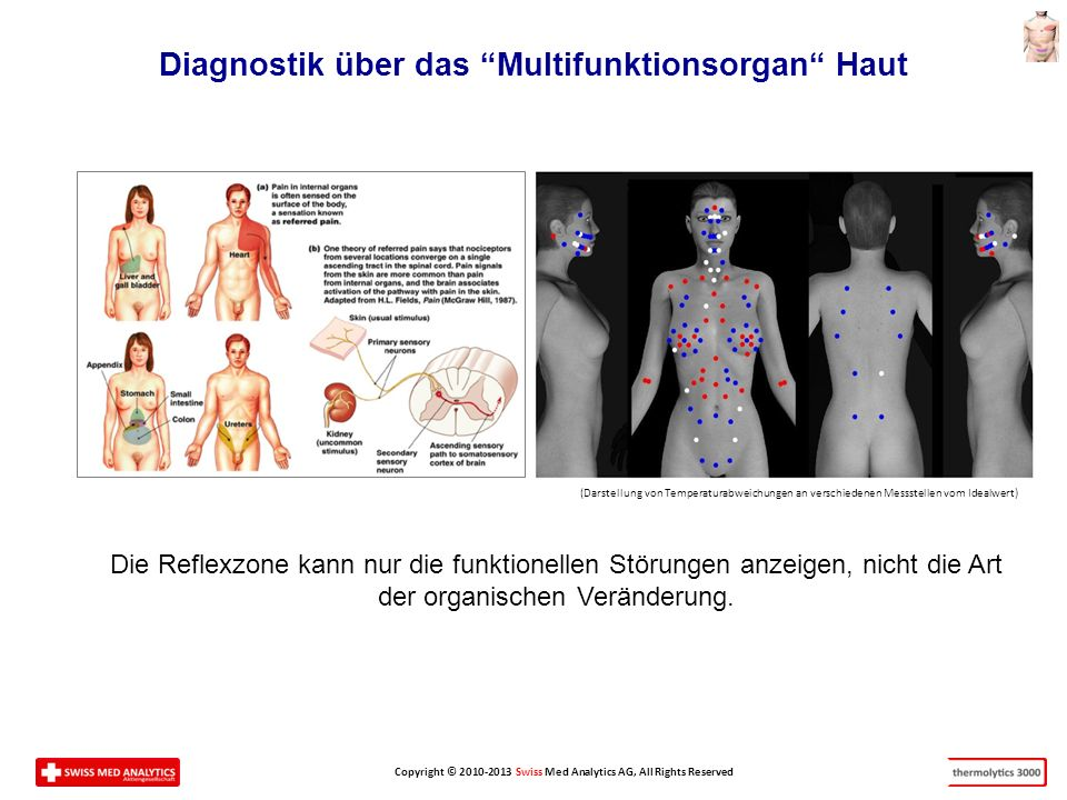 Diagnostik über das Multifunktionsorgan Haut