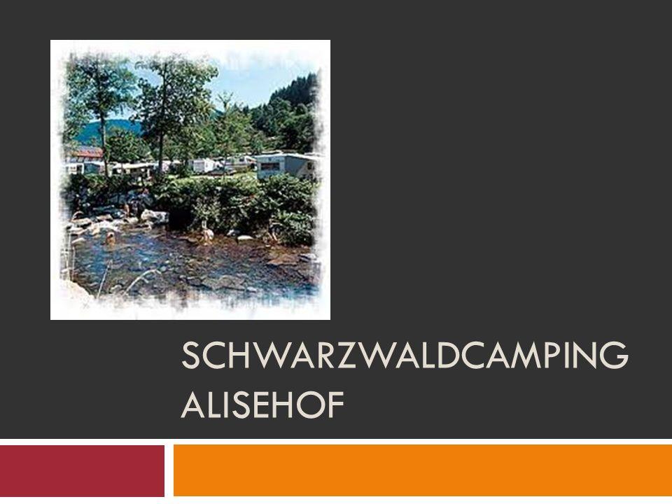Schwarzwaldcamping Alisehof