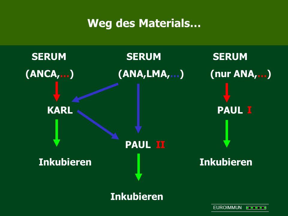 Weg des Materials… SERUM SERUM SERUM (ANCA,…) (ANA,LMA,…) (nur ANA,…)