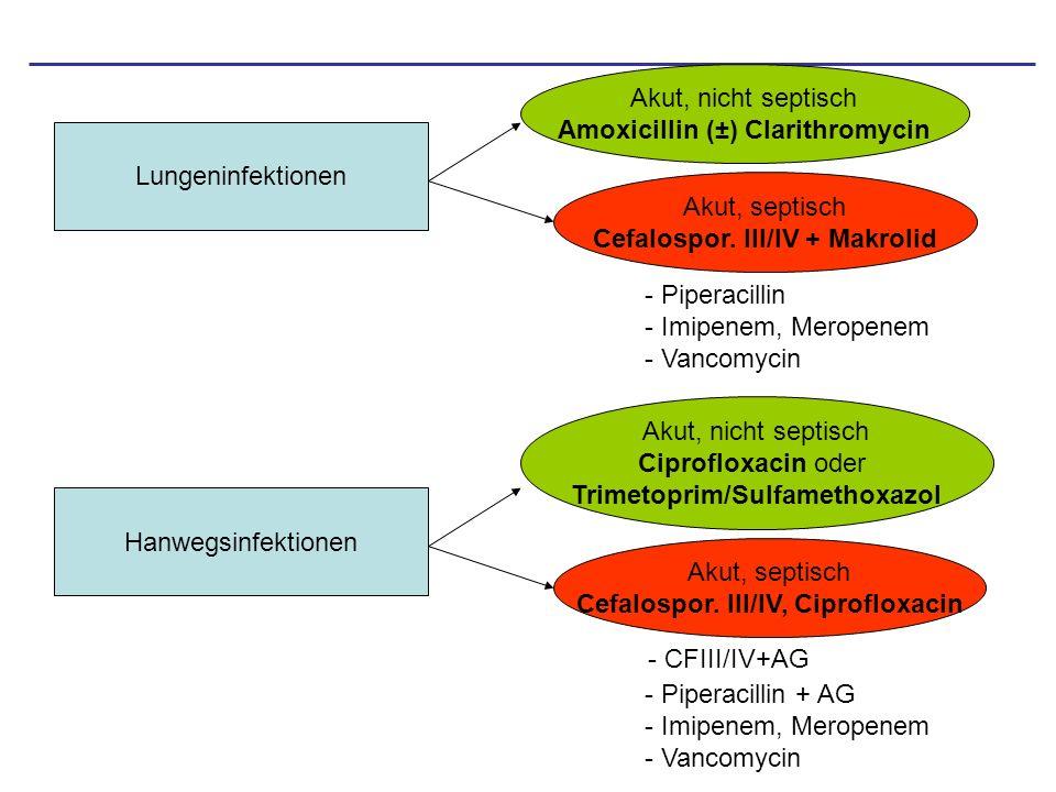 Amoxicillin (±) Clarithromycin