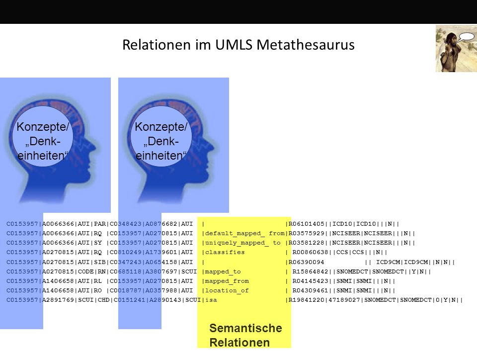 Relationen im UMLS Metathesaurus
