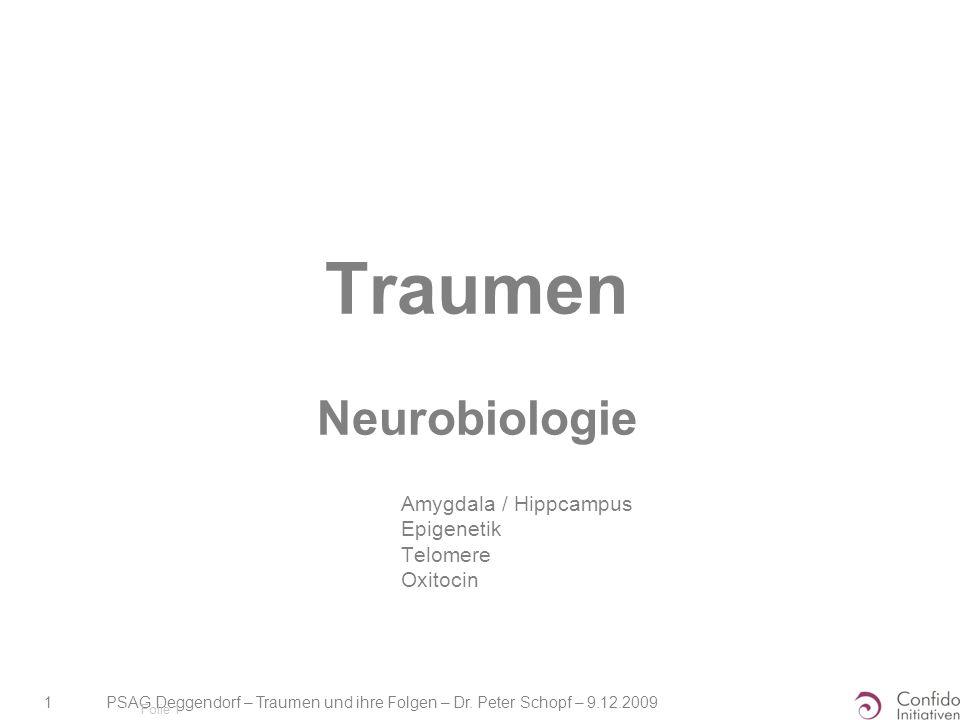 Traumen Neurobiologie
