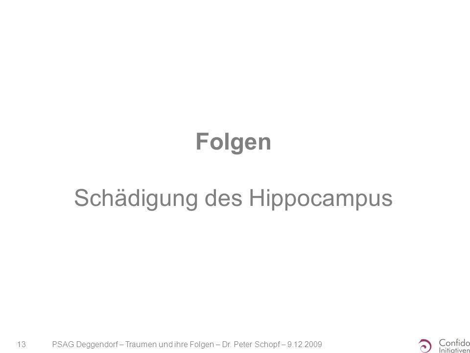 Folgen Schädigung des Hippocampus