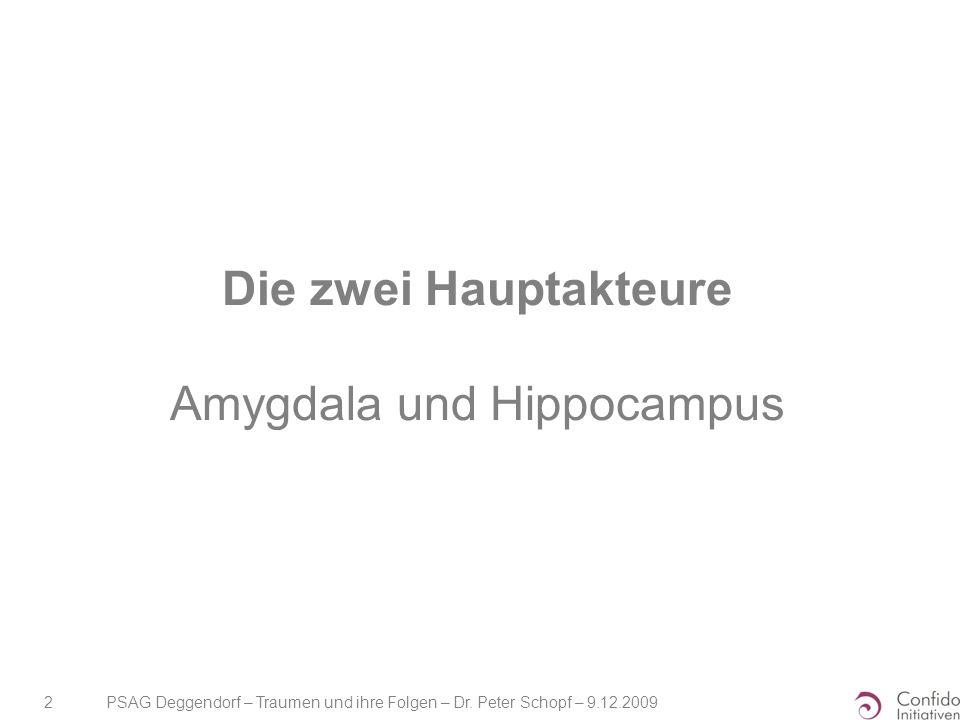 Die zwei Hauptakteure Amygdala und Hippocampus