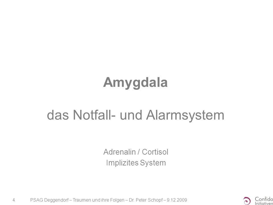Amygdala das Notfall- und Alarmsystem