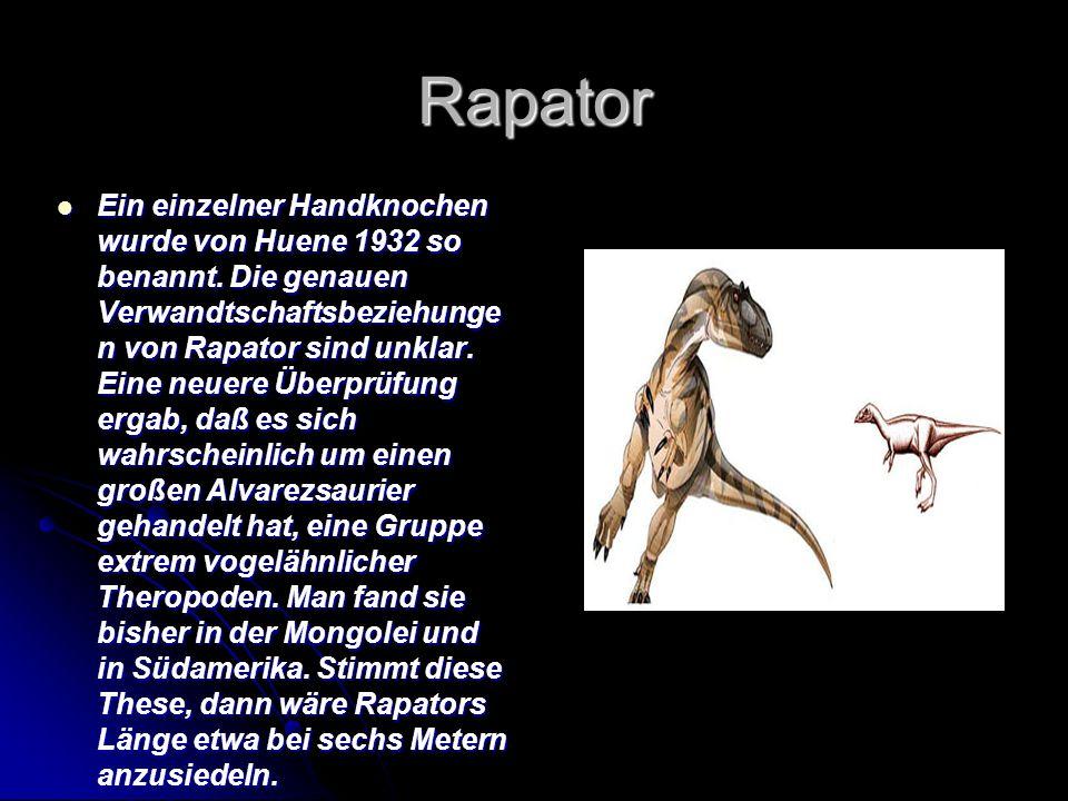 Rapator