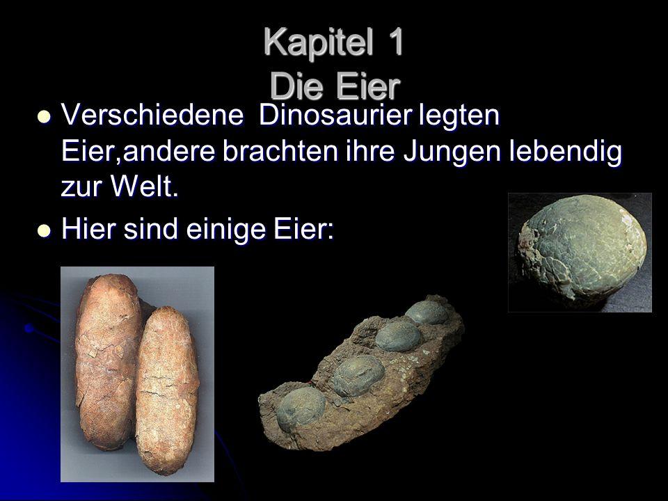 Kapitel 1 Die EierVerschiedene Dinosaurier legten Eier,andere brachten ihre Jungen lebendig zur Welt.