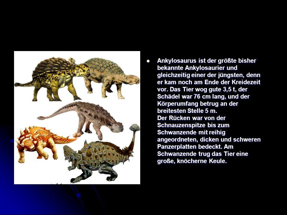 Ankylosaurus ist der größte bisher bekannte Ankylosaurier und gleichzeitig einer der jüngsten, denn er kam noch am Ende der Kreidezeit vor.