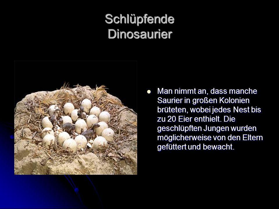 Schlüpfende Dinosaurier