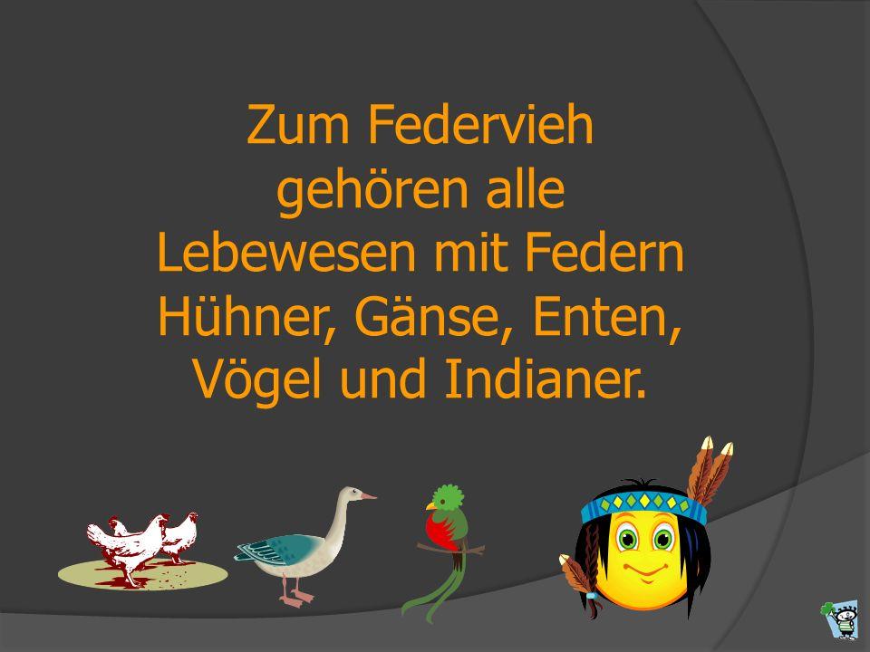 Zum Federvieh gehören alle Lebewesen mit Federn Hühner, Gänse, Enten,