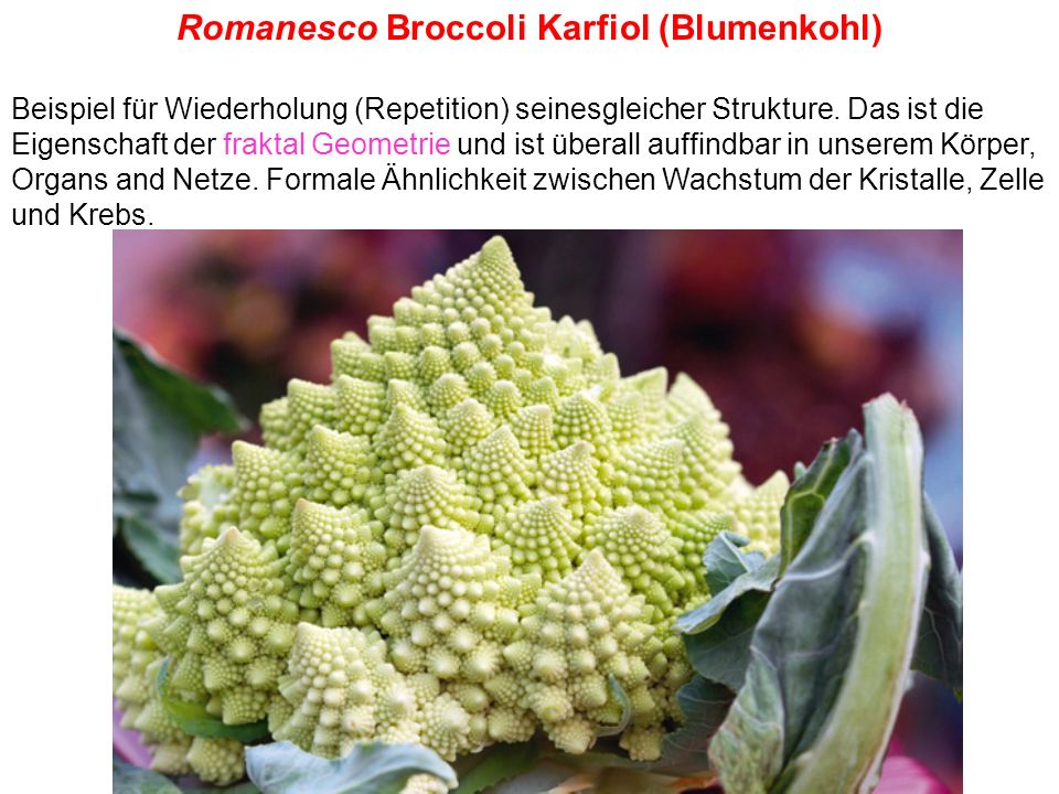 Romanesco Broccoli Karfiol (Blumenkohl)
