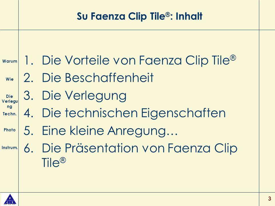 Su Faenza Clip Tile®: Inhalt