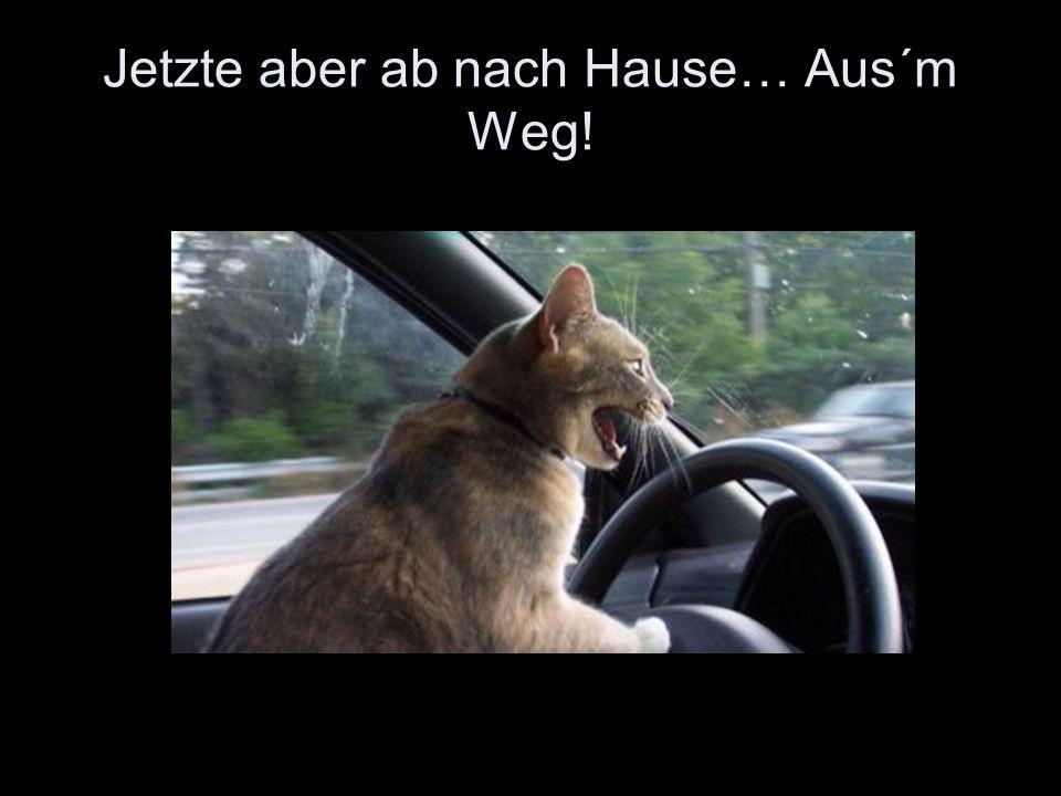 Jetzte aber ab nach Hause… Aus´m Weg!