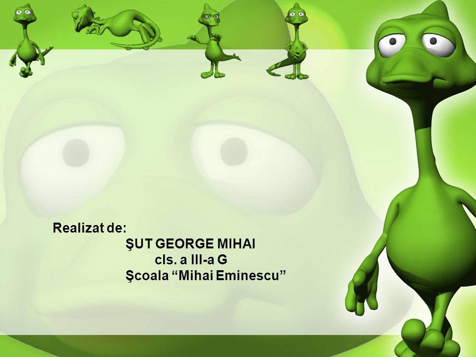 Realizat de: ŞUT GEORGE MIHAI cls. a III-a G Şcoala Mihai Eminescu