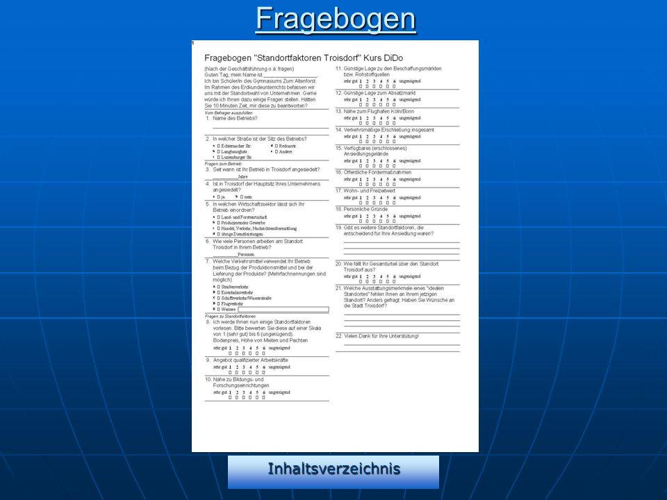 Fragebogen Inhaltsverzeichnis