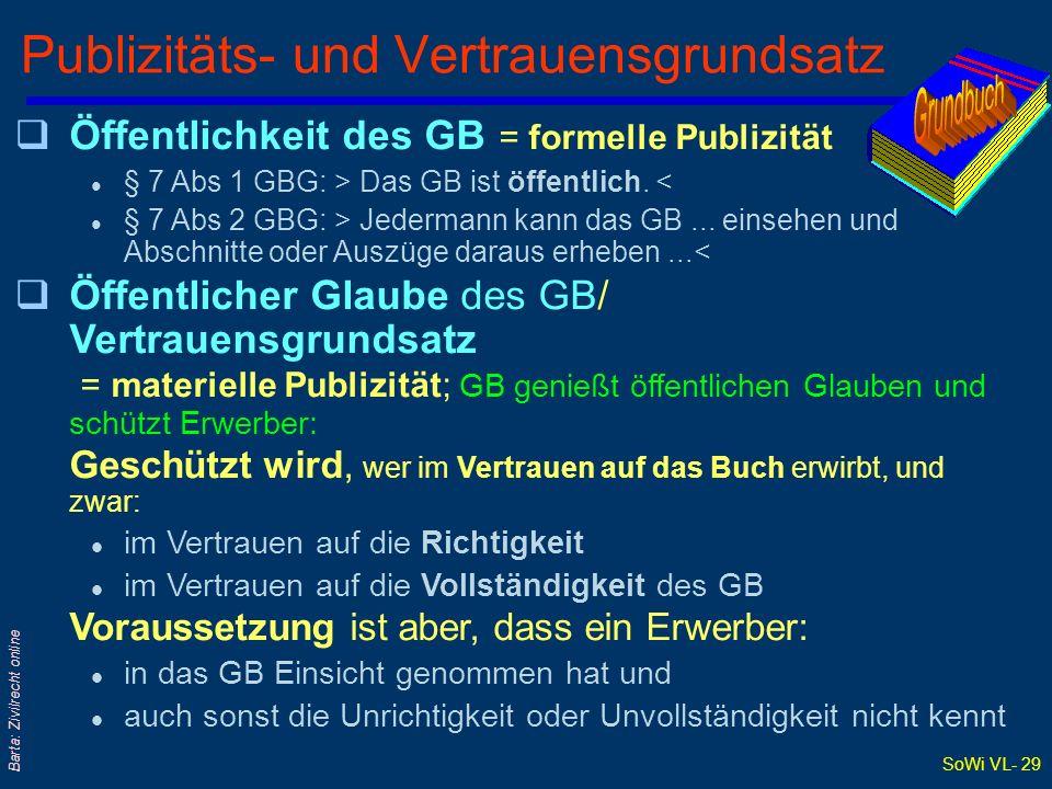 Publizitäts- und Vertrauensgrundsatz