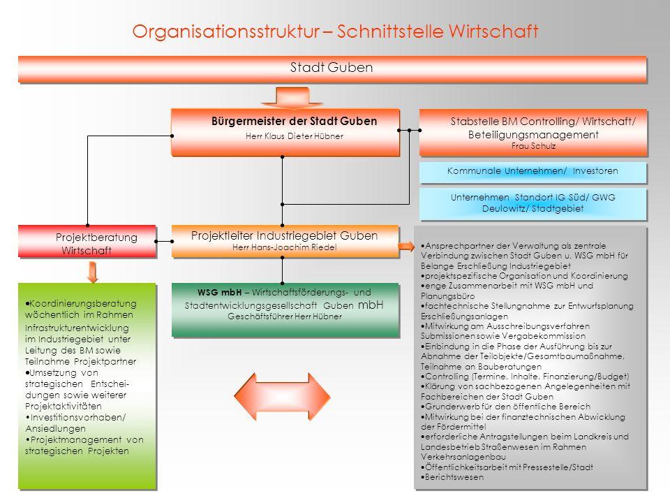 Organisationsstruktur – Schnittstelle Wirtschaft