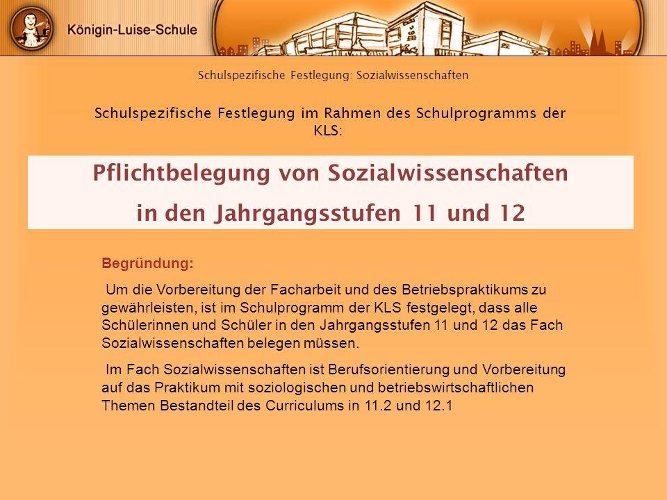 Schulspezifische Festlegung: Sozialwissenschaften