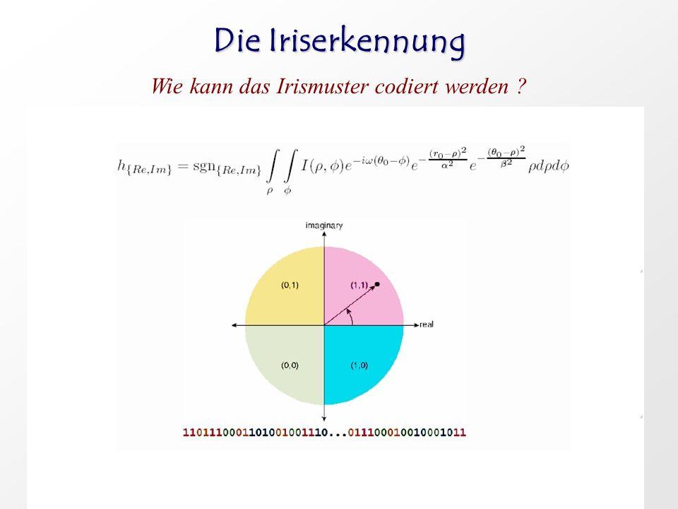 Wie kann das Irismuster codiert werden