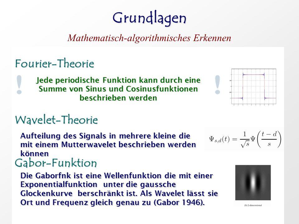 Grundlagen Fourier-Theorie Wavelet-Theorie Gabor-Funktion