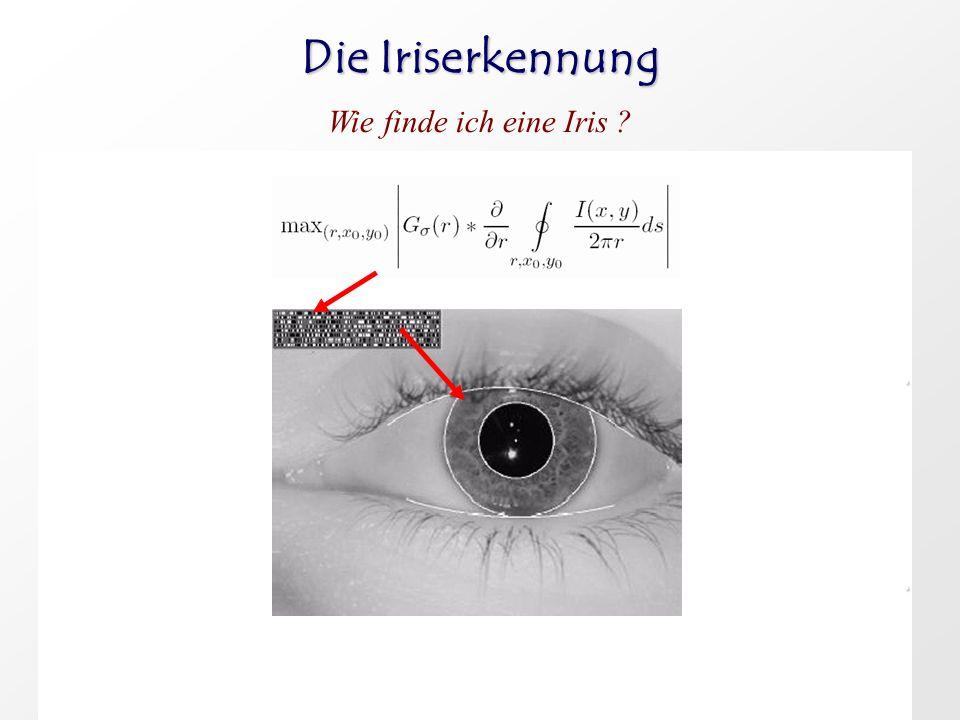 3. Augenlider werden ähnlich erkannt nur Splines statt Kreise