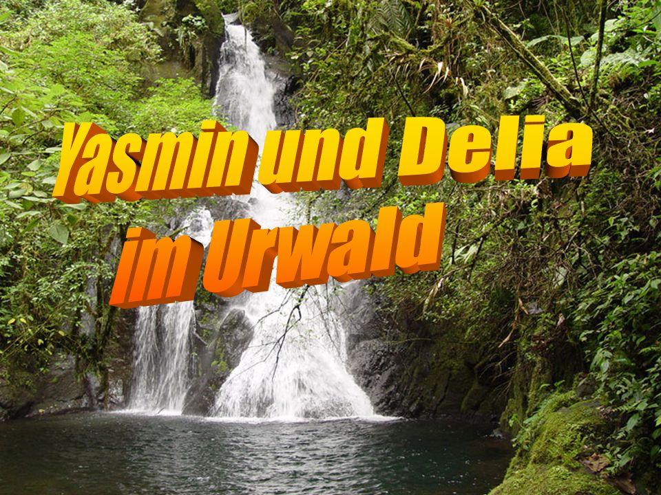 Yasmin und Delia im Urwald