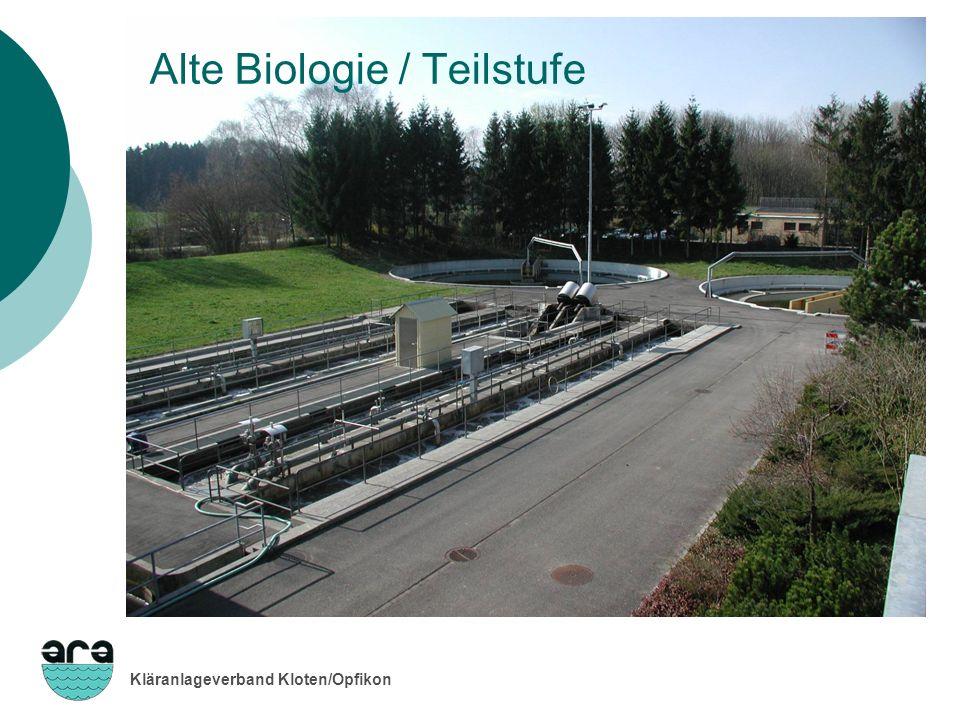 Alte Biologie / Teilstufe