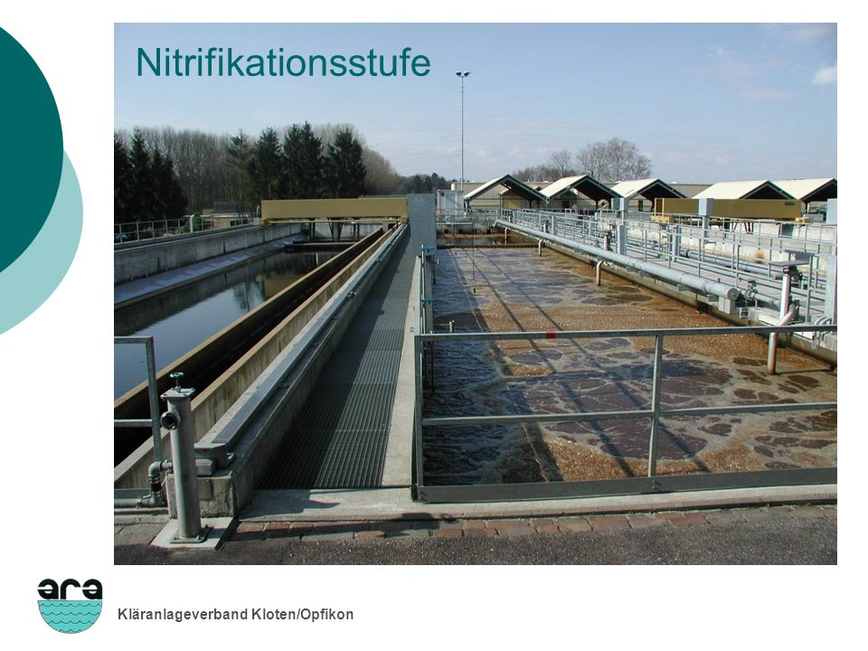 Nitrifikationsstufe