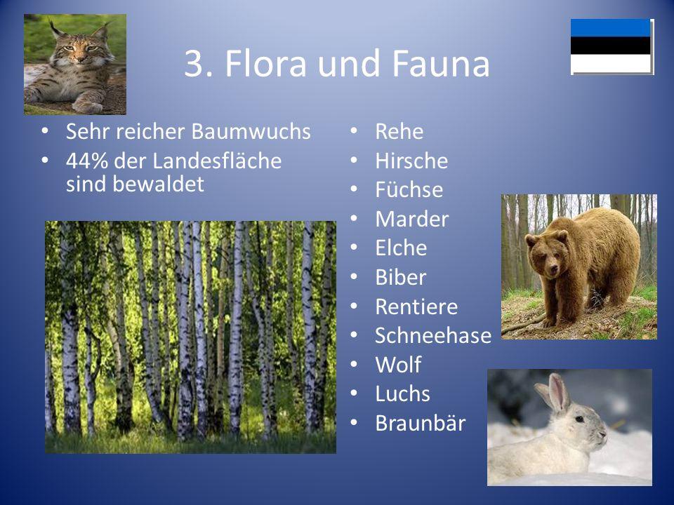 3. Flora und Fauna Sehr reicher Baumwuchs