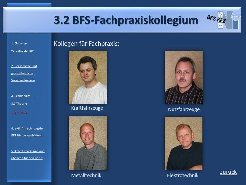 3.2 BFS-Fachpraxiskollegium