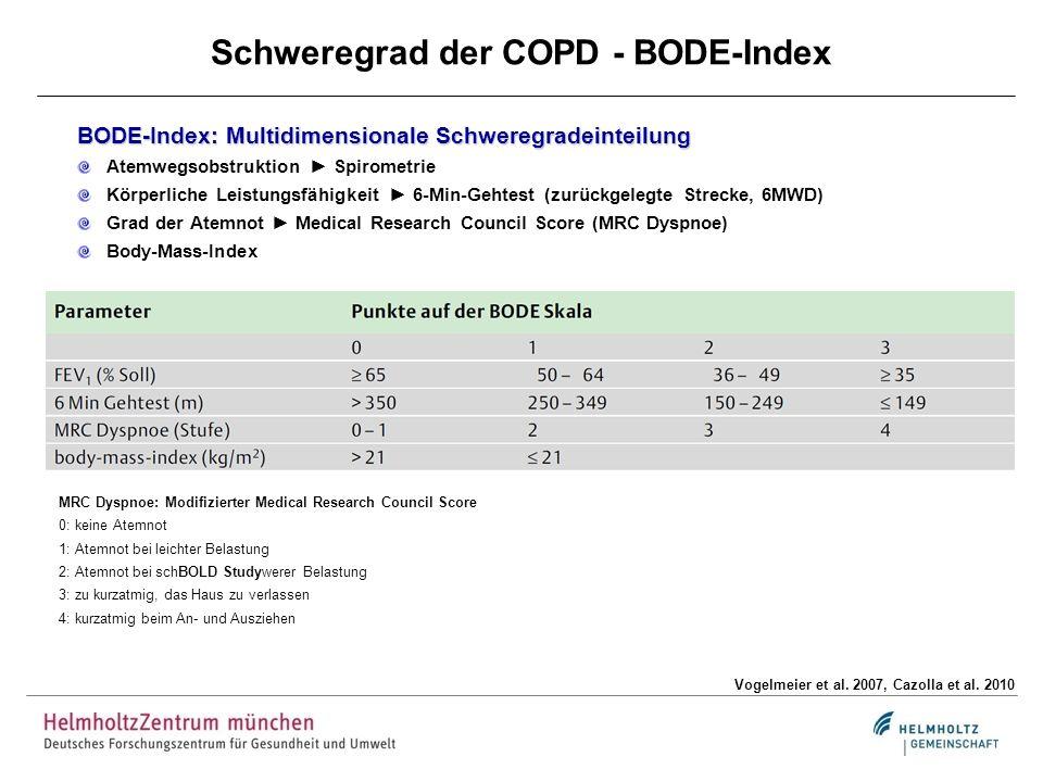 Schweregrad der COPD - BODE-Index