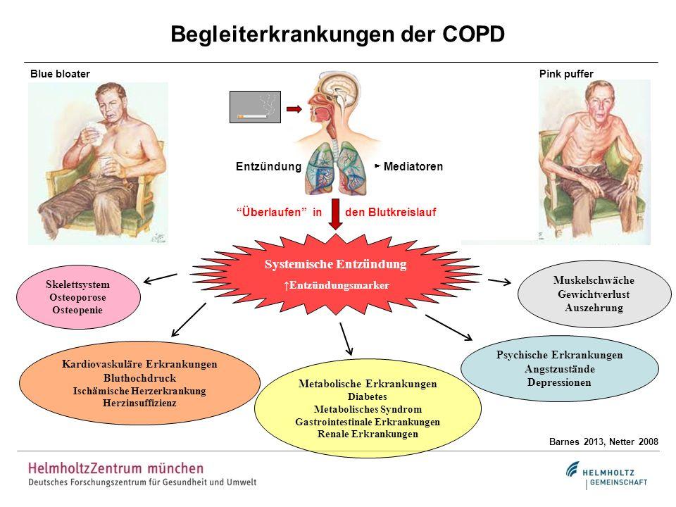 Begleiterkrankungen der COPD