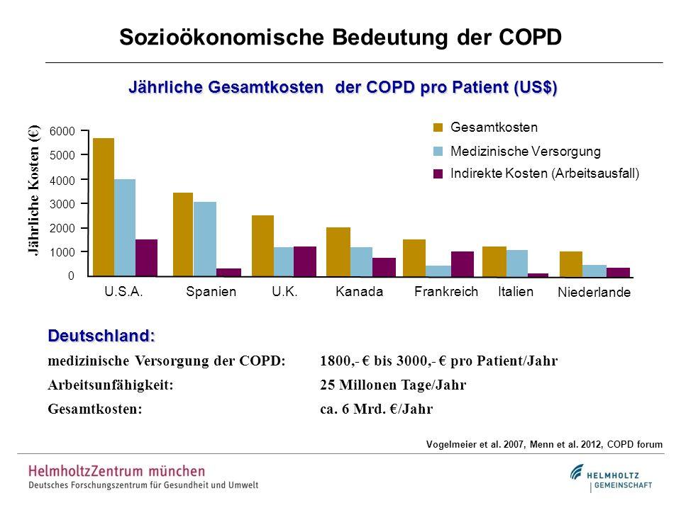 Sozioökonomische Bedeutung der COPD