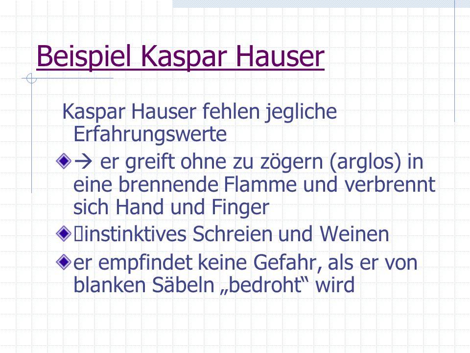 Beispiel Kaspar Hauser