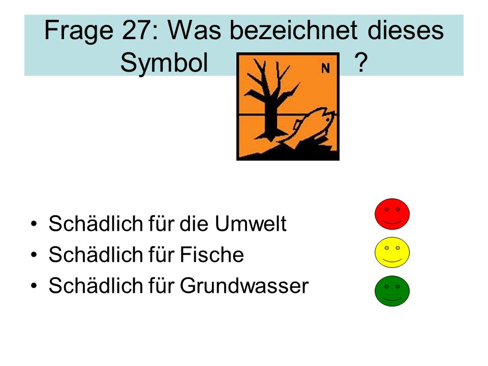 Frage 27: Was bezeichnet dieses Symbol