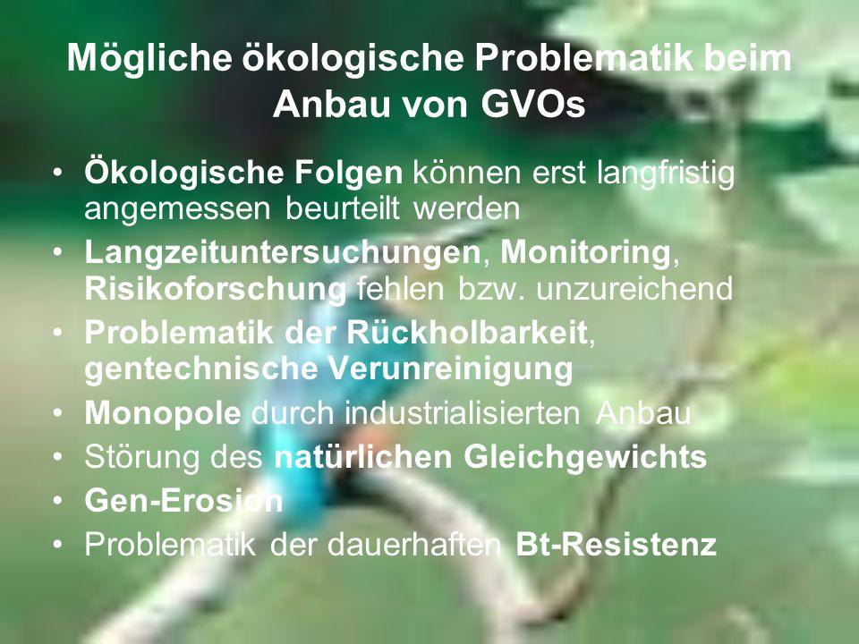Mögliche ökologische Problematik beim Anbau von GVOs