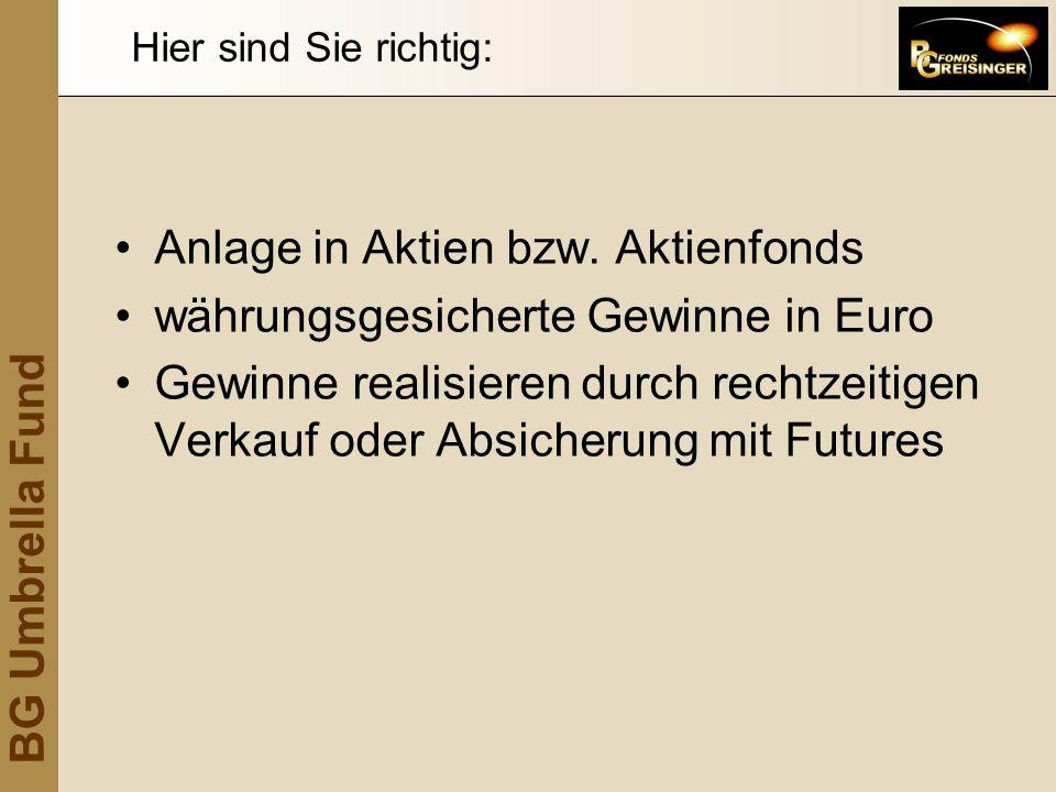 Anlage in Aktien bzw. Aktienfonds währungsgesicherte Gewinne in Euro