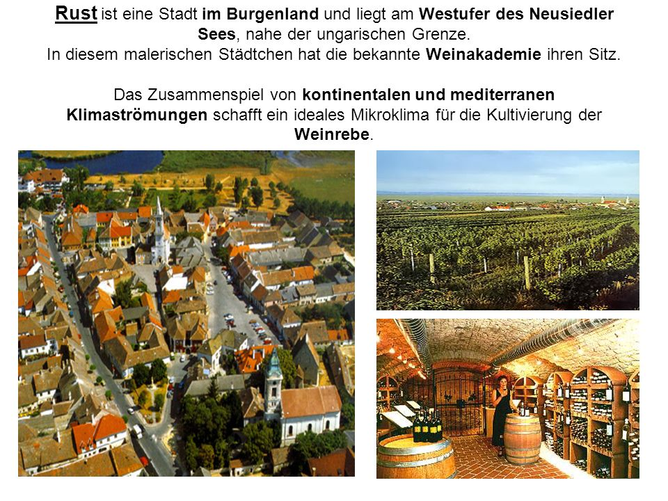 Rust ist eine Stadt im Burgenland und liegt am Westufer des Neusiedler Sees, nahe der ungarischen Grenze.