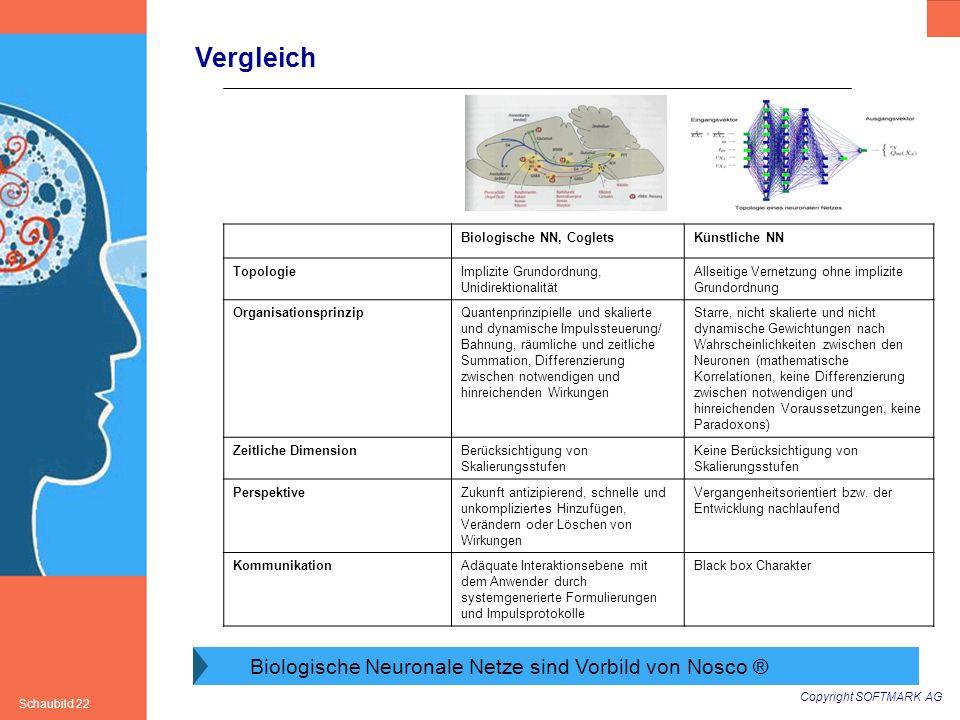 Vergleich Biologische Neuronale Netze sind Vorbild von Nosco ®