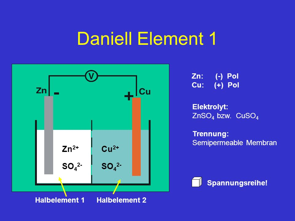 Daniell Element 1 Zn2+ Cu2+ SO42- SO42- Zn: (-) Pol Cu: (+) Pol