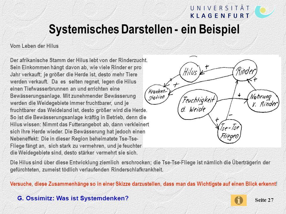 Systemisches Darstellen - ein Beispiel