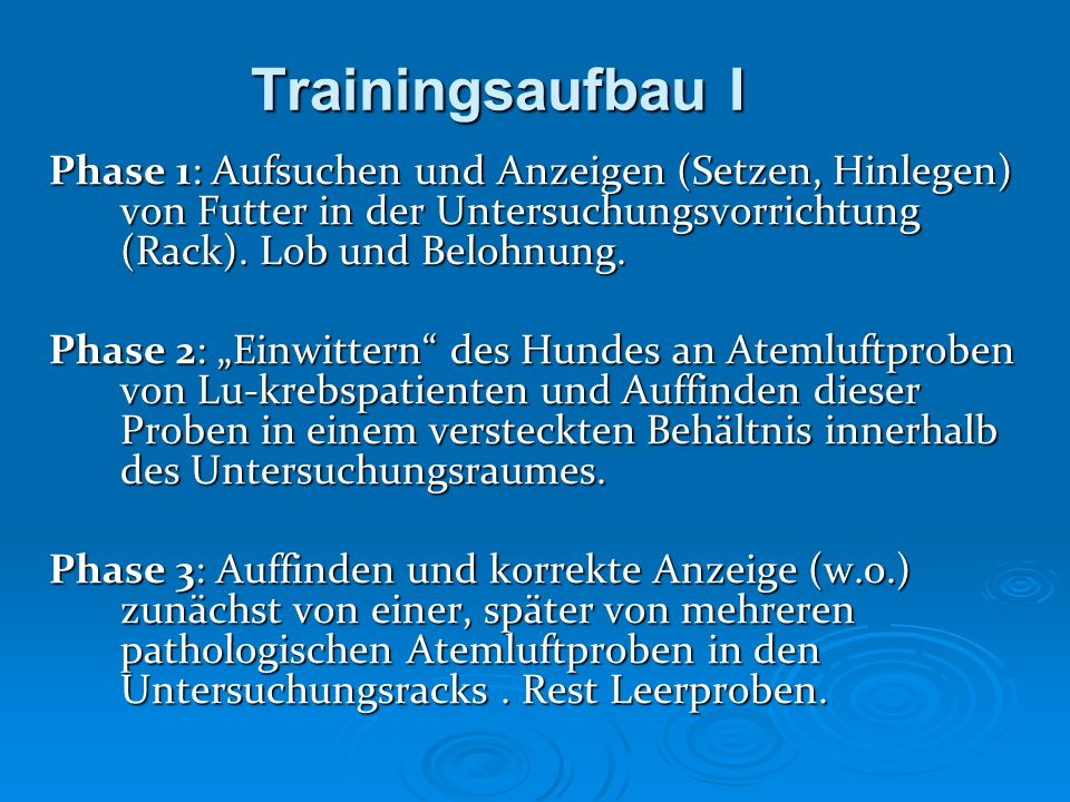 Trainingsaufbau IPhase 1: Aufsuchen und Anzeigen (Setzen, Hinlegen) von Futter in der Untersuchungsvorrichtung (Rack). Lob und Belohnung.