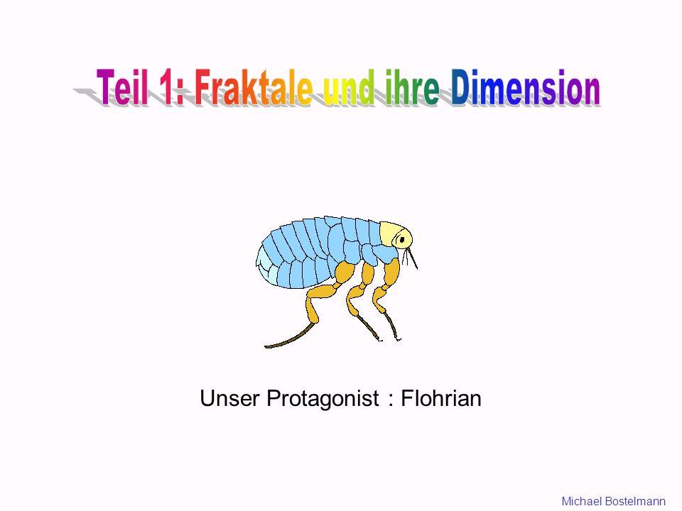 Teil 1: Fraktale und ihre Dimension