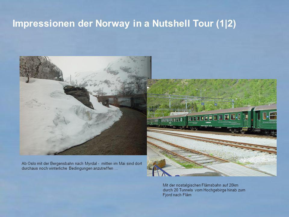 Impressionen der Norway in a Nutshell Tour (1|2)