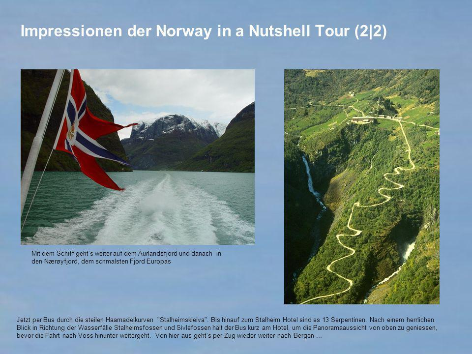 Impressionen der Norway in a Nutshell Tour (2|2)