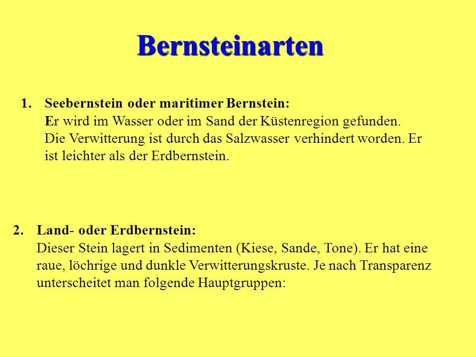 Bernsteinarten